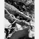Мамедово ущелье